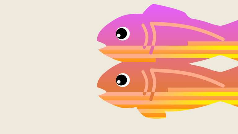 Glitch.com fish logo in pink and orange